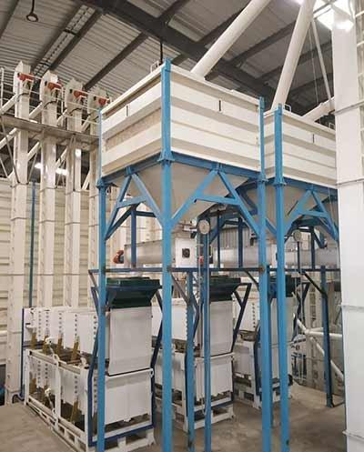 Nut Processing Plant